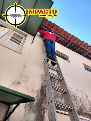 Dedetização e Limpeza de Fossa, Tel: * - Foto 3