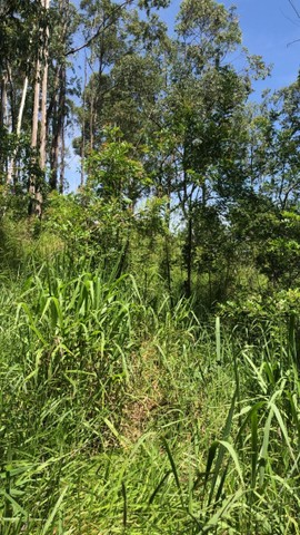 L*Terrenos localizados no bairro: Campininha em Atibaia, interior de SP. - Foto 5