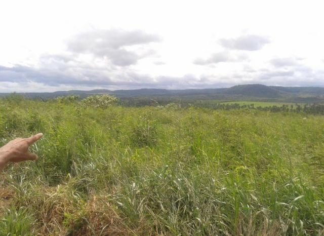 Fazenda Gameleira / 1562 hectares / documentação completa / próximo a Colinas - Foto 11