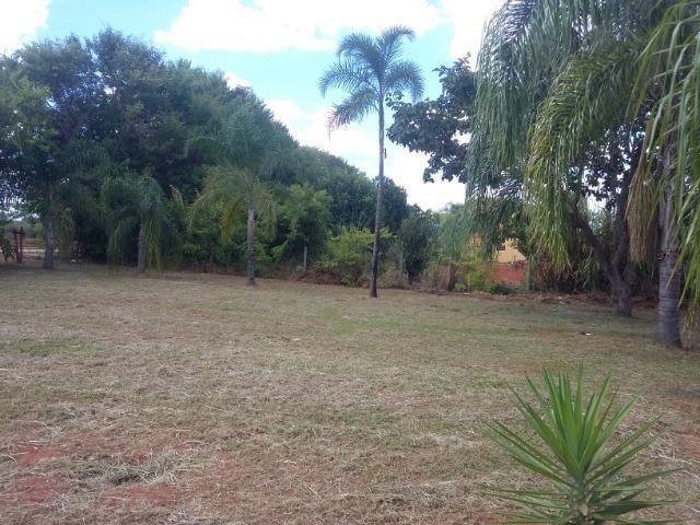 Casa Investimento - 5000m2 - Foto 8