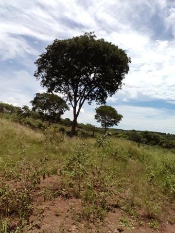 Pequeno sitio próximo de uruana de minas - Foto 2