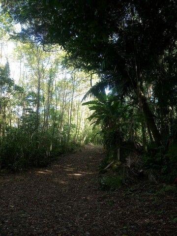 Área terra Morro Reuter BELVEDERE - Foto 5