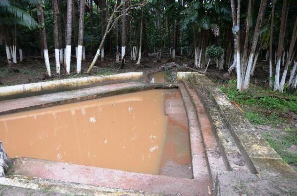 Chácara no Maracanã - Cód.: 1194 - Foto 14