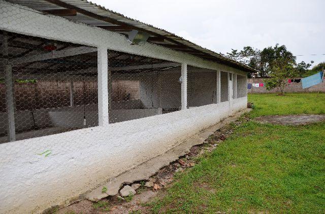Chácara no Maracanã - Cód.: 1194 - Foto 18