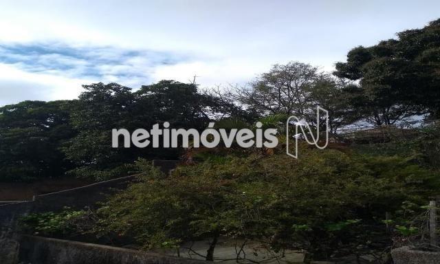 Casa à venda com 3 dormitórios em Jardim filadélfia, Belo horizonte cod:718950 - Foto 6