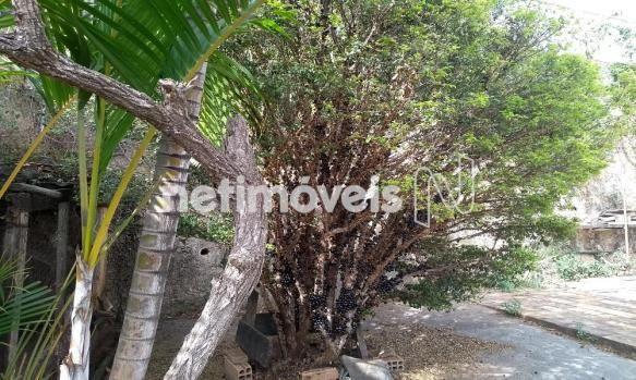 Casa à venda com 3 dormitórios em Jardim filadélfia, Belo horizonte cod:718950 - Foto 4
