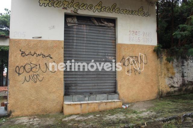 Casa à venda com 3 dormitórios em Serrano, Belo horizonte cod:742242 - Foto 14