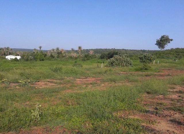 Fazenda Gameleira / 1562 hectares / documentação completa / próximo a Colinas - Foto 9