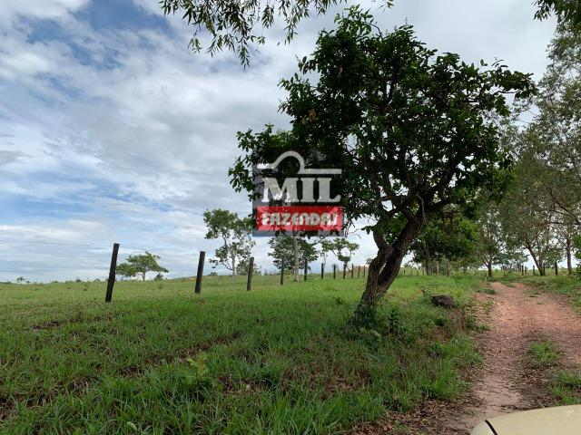 Vende ou troca por terra maior Chácara 5 Alqueires São Miguel do Passa Quatro-GO - Foto 6