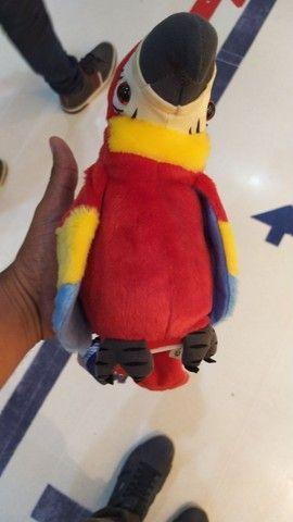 Papagaio Eletrônico BR Marchine - Foto 2