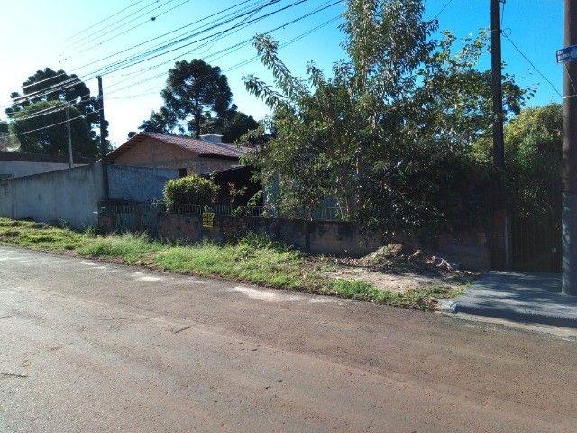Terreno a venda na Vila Marina / Uvaranas - Foto 2