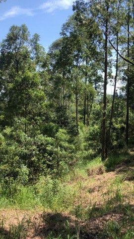 L*Terrenos localizados no bairro: Campininha em Atibaia, interior de SP. - Foto 4