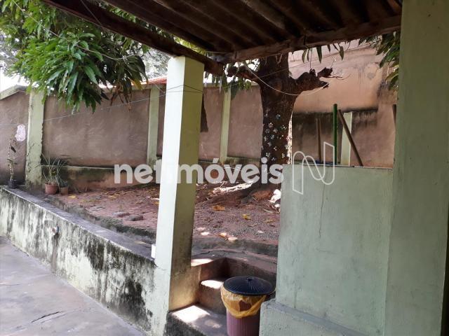 Casa à venda com 3 dormitórios em Alípio de melo, Belo horizonte cod:721345 - Foto 11