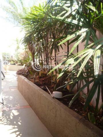 Casa à venda com 3 dormitórios em Alípio de melo, Belo horizonte cod:648049 - Foto 11