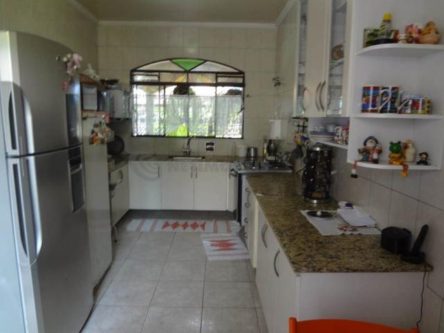 Casa à venda com 5 dormitórios em Serrano, Belo horizonte cod:667224 - Foto 7