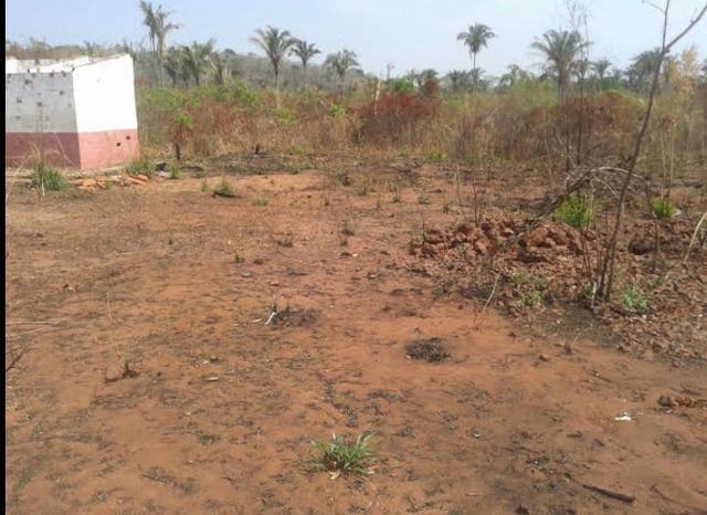 Fazenda Gameleira / 1562 hectares / documentação completa / próximo a Colinas - Foto 10