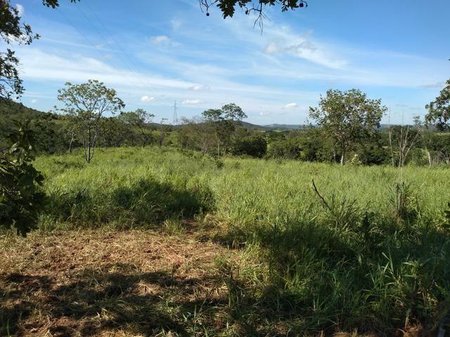Sitio 41 hect. a 12 km de Unaí - Foto 4