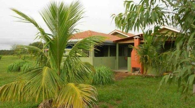 Maravilhoso Rancho/Sitio margens do Rio Paraná - Foto 2