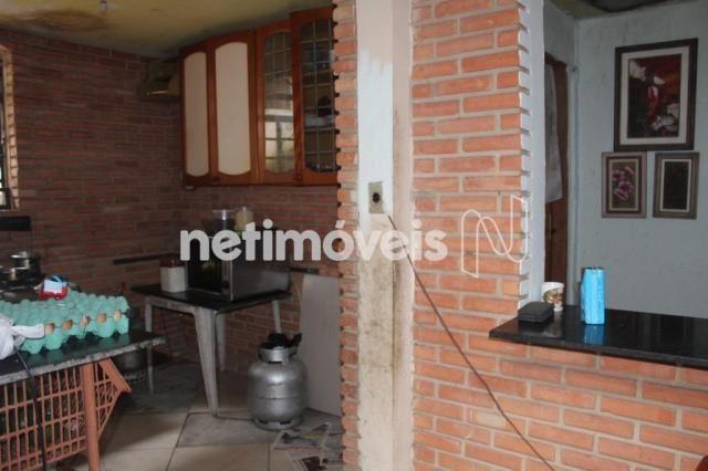Casa à venda com 3 dormitórios em Serrano, Belo horizonte cod:742242 - Foto 12
