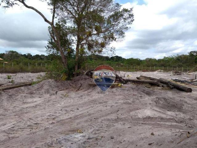 Terreno para alugar, 2.500 m² por R$ 20.000/ano Trancoso - Porto Seguro/BA - Foto 5