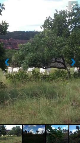 Fazenda bruta em Bom Jesus - PI - Foto 2