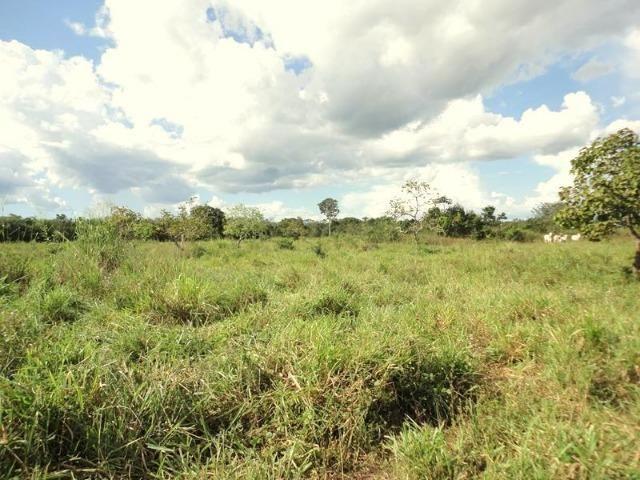 Sitio a 20 km de Cuiabá - Foto 3