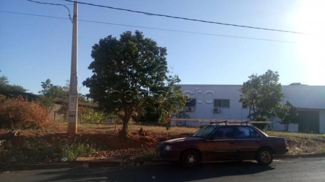 Galpão/depósito/armazém à venda em Distrito industrial, Cedral cod:V8253 - Foto 3