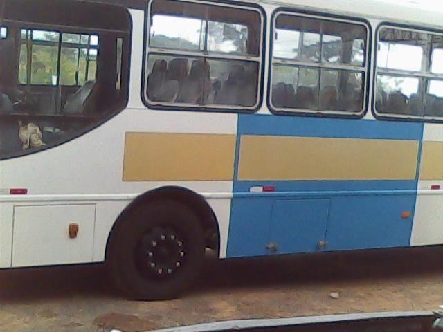 Ônibus Caio Apache 2001 - Foto 8
