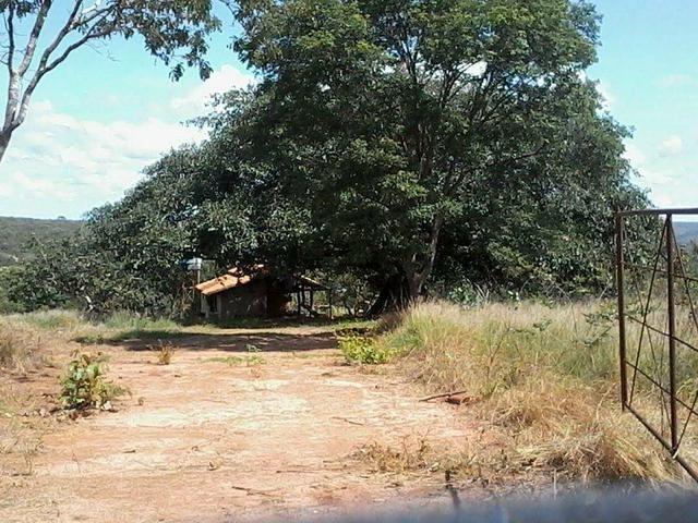 Pequeno sitio próximo de uruana de minas - Foto 3