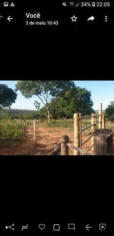 Pequeno sitio próximo de uruana de minas - Foto 6