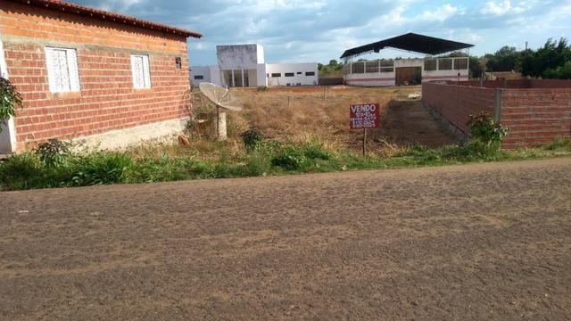 Terreno - São João da Serra PI - Foto 2