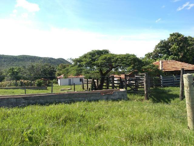 Sitio 41 hect. a 12 km de Unaí