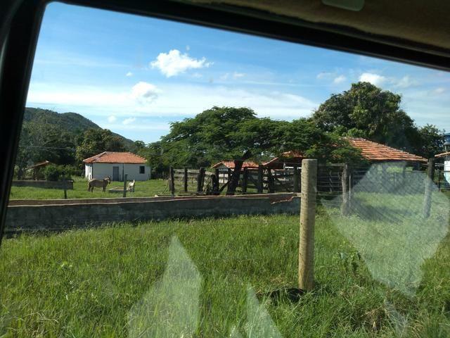 Sitio 41 hect. a 12 km de Unaí - Foto 2