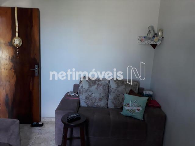 Casa à venda com 3 dormitórios em Alípio de melo, Belo horizonte cod:721345 - Foto 4