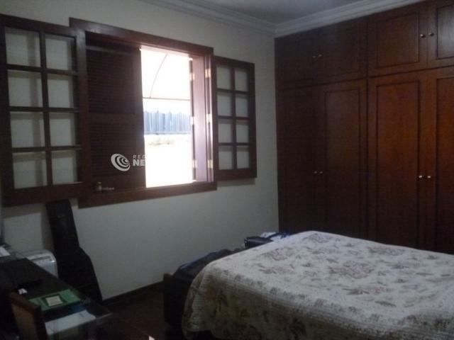 Casa à venda com 3 dormitórios em Serrano, Belo horizonte cod:36040 - Foto 6