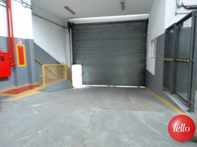 Galpão/depósito/armazém para alugar em Mooca, São paulo cod:187905 - Foto 5