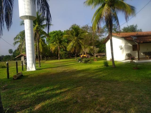 Chácara de Recreio e Pesqueiro Distr da Guia - Casa Sede e Casa de Caseiro - Foto 17