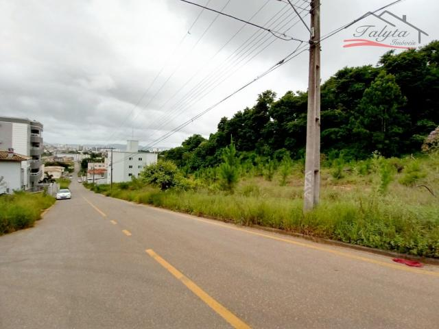 Terreno à venda em Ipiranga, São josé cod:43 - Foto 11