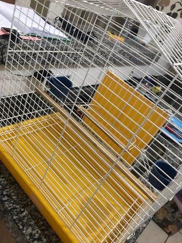 Gaiola para pássaros  - Foto 4