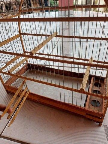 gaiola de passarinho  - Foto 2
