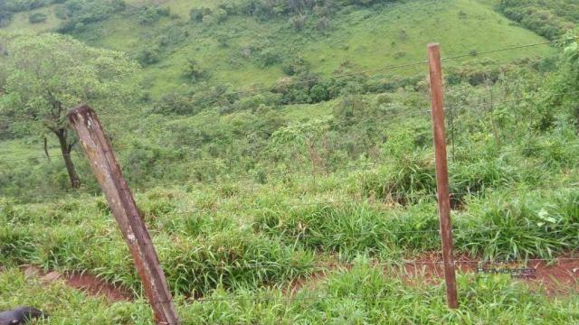 Fazenda à venda, 2541000 m² por r$ 3.675.000 - fazenda velha - nova laranjeiras/pr - Foto 8