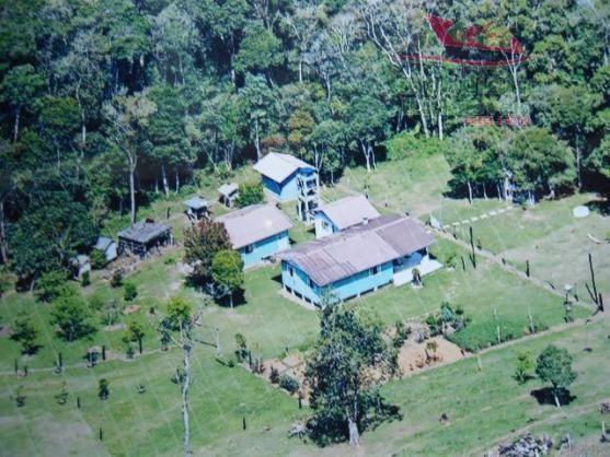 Chácara rural à venda, campo largo da roseira, são josé dos pinhais - ch0026. - Foto 3