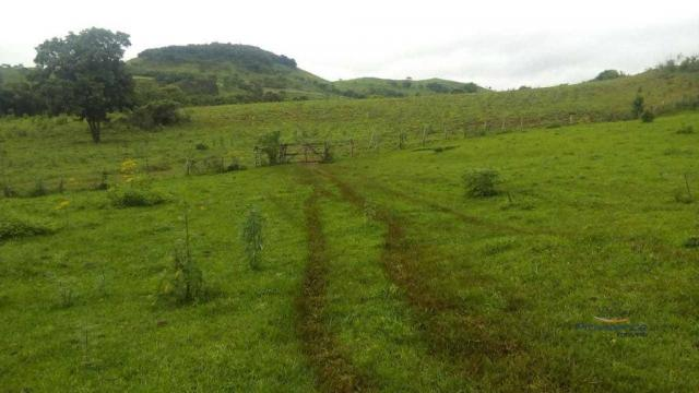 Fazenda à venda, 2541000 m² por r$ 3.675.000 - fazenda velha - nova laranjeiras/pr - Foto 5