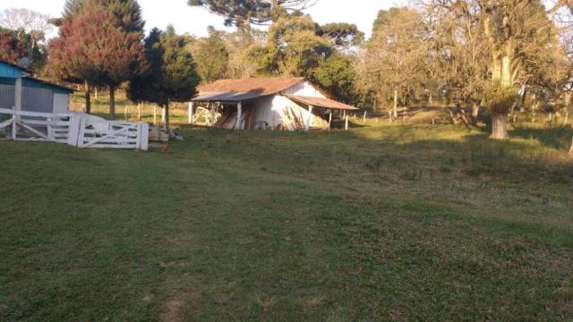 Sítio rural à venda, zona rural, quitandinha. - Foto 20