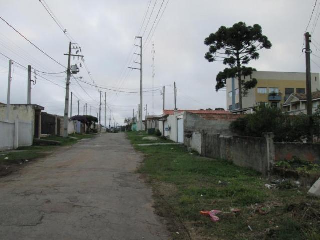 Terreno à venda, 420 m² por r$ 160.000 - rio pequeno - são josé dos pinhais/pr - Foto 6