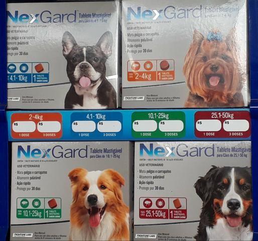 Proteção p cães 999 04 6025