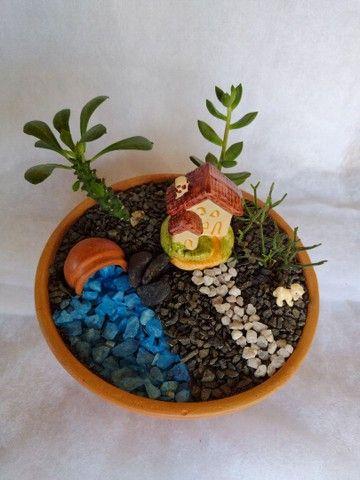 Mini jardim - Foto 2