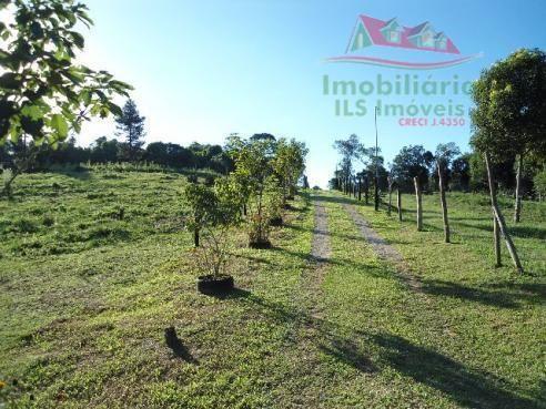 Chácara rural à venda, campo largo da roseira, são josé dos pinhais - ch0026. - Foto 9