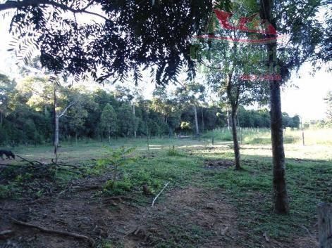 Chácara rural à venda, campo largo da roseira, são josé dos pinhais - ch0026. - Foto 12