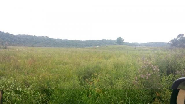 Área à venda, 103000 m² por r$ 700.000,00 - borda do campo - são josé dos pinhais/pr - Foto 17